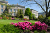 Spring on OHSU Campus