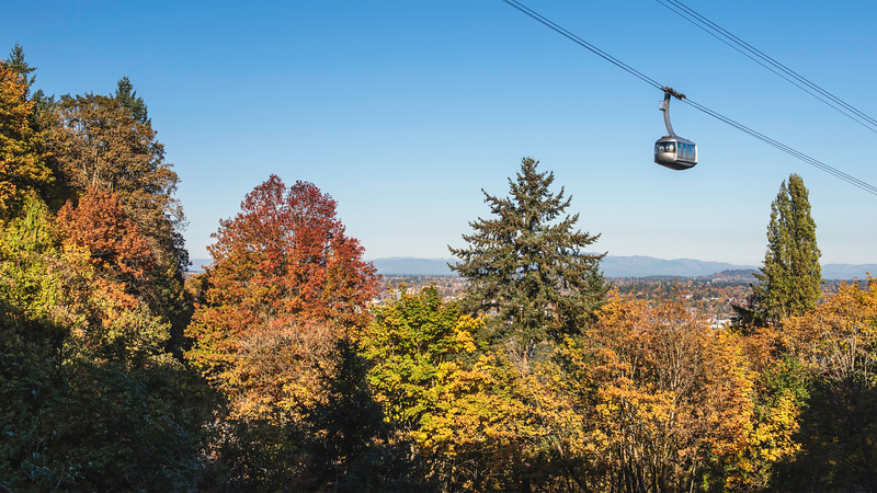 Tram Fall Colors Pano