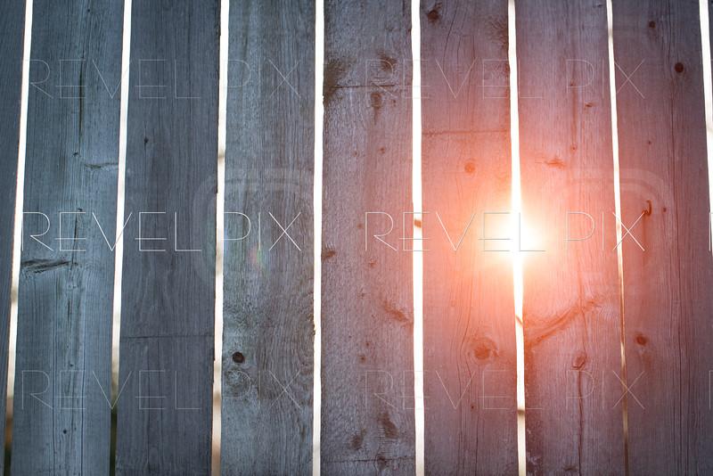 Sun Through Fence Background