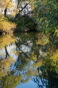 Autumn nature in Stockholm city