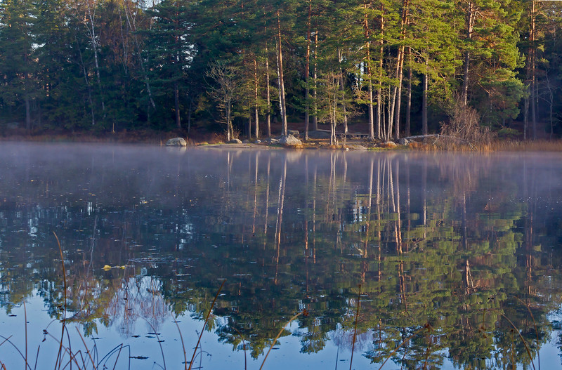 Fog in a small lake