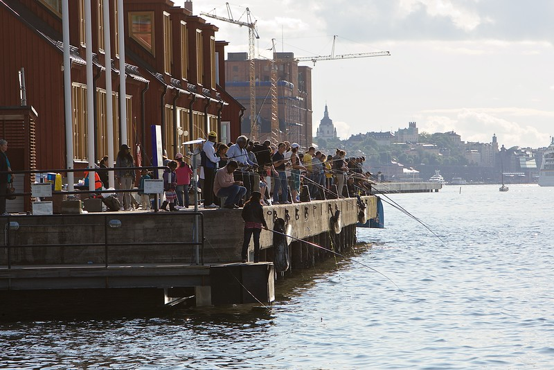 Fishing in Stockholm city - all water is clean in Sweden