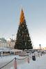 Christmas tree Skeppsbron Stockholm
