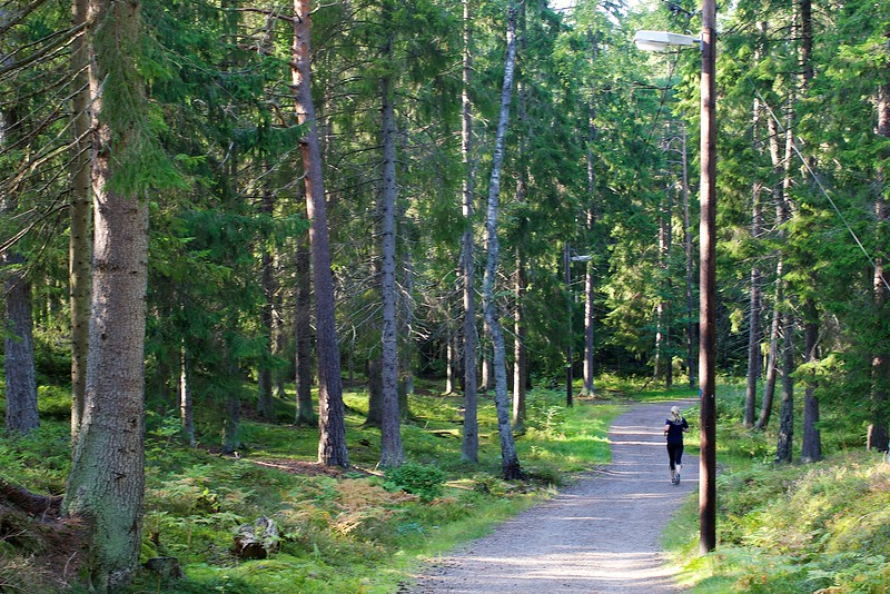 Runing track with lamps in the forest, Stockholm