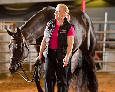 Equine Stock Images - Horse Shows BTS