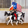 gaited horse tennese walker texas american flag