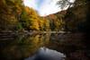 Calm beautiful stream in the Fall