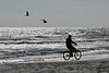 lone bicycle rider on beach ..................................................................Prints or digital files can be purchased by e mailing DFriend150@gmail.com