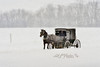 "Horse and buggy in snow storm<br /> <br /> to purchase - <a href=""http://dan-friend.artistwebsites.com/featured/2-horse-and-buggy-in-snow-storm-dan-friend.html"">http://dan-friend.artistwebsites.com/featured/2-horse-and-buggy-in-snow-storm-dan-friend.html</a>                                                                              ..................................pixel paintography"