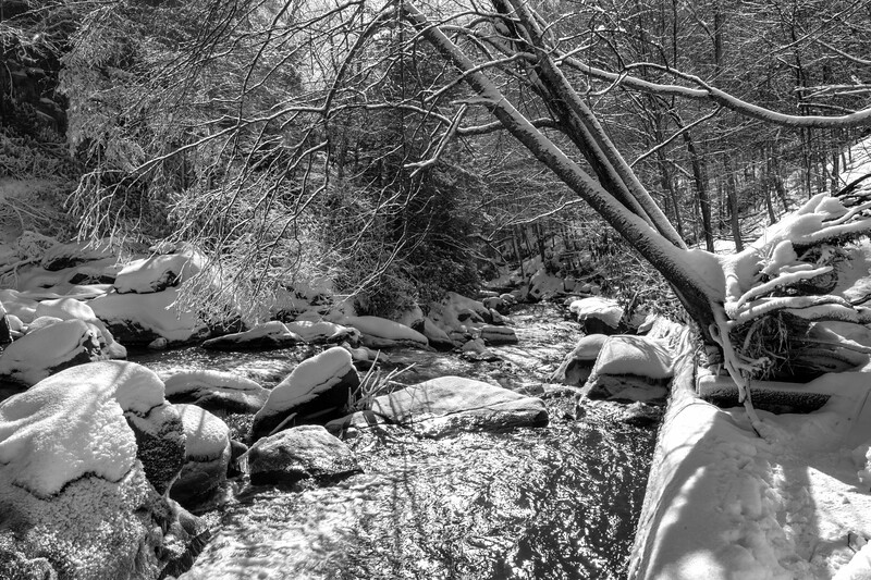 Flowing stream in winter through snow covered woods - bw