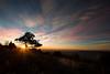 Sunrise on roaring plains at Dolly Sods