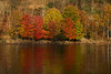 Muted colors at  end of Fall paintography