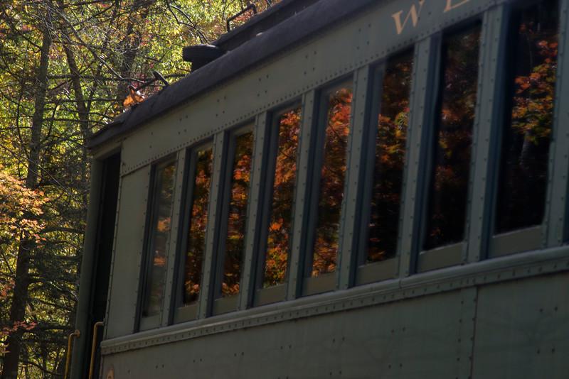 Fall in the windows