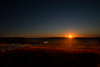 Last rays of sun striking bush