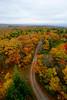 Road leading to fall foliage