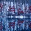 Blue cold