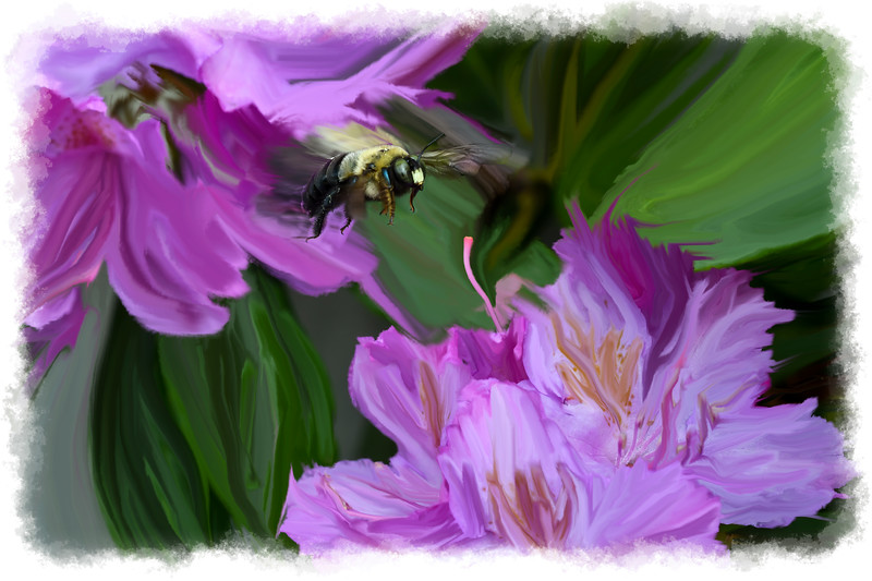 Paintograhy of bummbel and and Rhododendron flower