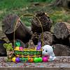 Chipmunk on edge of Easter basket