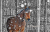 "Horse in snow storm<br /> <br /> to purchase - <a href=""http://dan-friend.artistwebsites.com/featured/horse-in-snow-strom-dan-friend.html"">http://dan-friend.artistwebsites.com/featured/horse-in-snow-strom-dan-friend.html</a>           .................................................................pixel paintography"