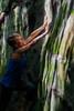 Eleonore climbing