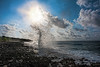 """Blow hole in morning.................to purchase - <a href=""""http://bit.ly/1l4JThY"""">http://bit.ly/1l4JThY</a>"""