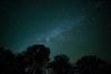 Milky Way near Seneca Rocks