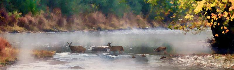 "Deer crossing stream......................to purchase - <a href=""http://bit.ly/1sPTXgb"">http://bit.ly/1sPTXgb</a>"