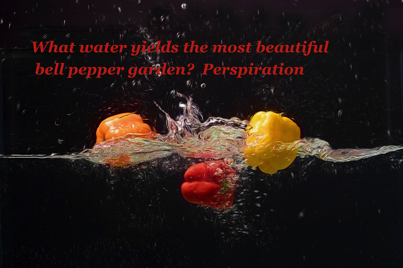 Water water yields the most beautiful bell pepper
