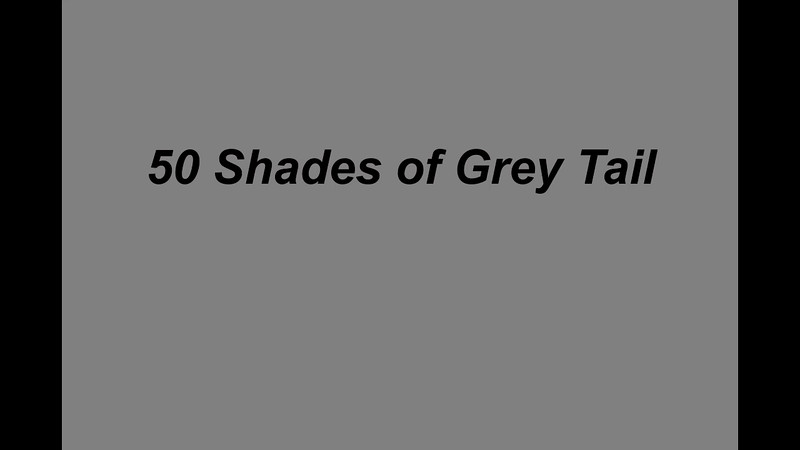 50 shades of grey tail the end