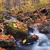 beautiful scene in the forest during autumn. Slow shutter speed to blur flowing water.