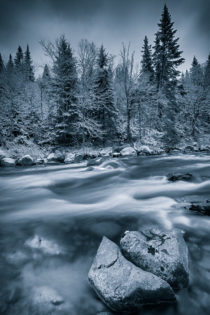 Black and white winter scene with tree,stones and a river. Dramatic blue tint to show the cold weather. Large depth of field.