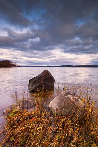Beautiful scene from a shore with moving grass in the water. Dramatic sky with clouds.