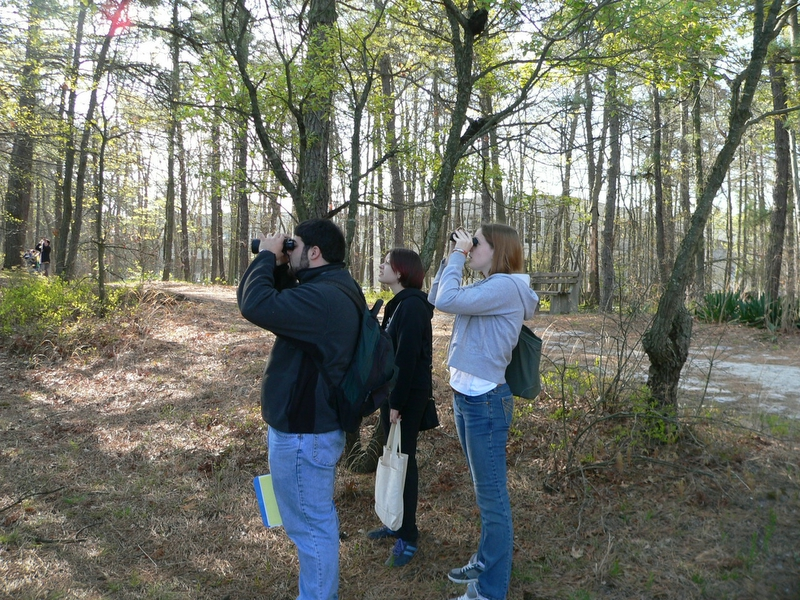 John, Sonya, and Tiffany, identifying eastern kingbird.