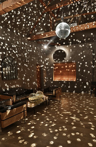 Barn Room Static Mirror Ball
