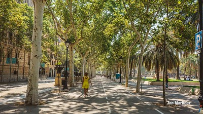 ArcDelTriomf Classic Pedestrian Tree Monument July Classic July Bcn-17