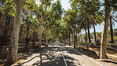 ArcDelTriomf Classic Pedestrian Tree Monument July Classic July Bcn-14