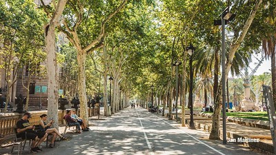 ArcDelTriomf Classic Pedestrian Tree Monument July Classic July Bcn-13