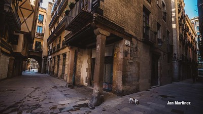 Caputxes Street Bcn-10
