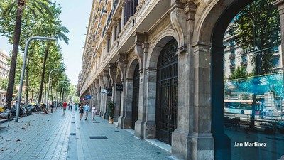 Diagonal Lateral Street Classic Pedestrian Tree Monument July Classic Bcn-52