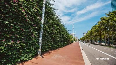 Poblenou Centre Park Area Flowers Walls Park Street Modern Bcn-3