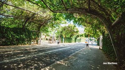Poblenou Centre Park Area Flowers Walls Park Street Modern Bcn-92