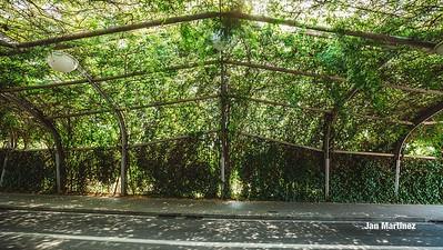 Poblenou Centre Park Area Flowers Walls Park Street Modern Bcn-105