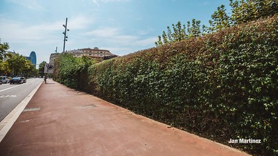 Poblenou Centre Park Area Flowers Walls Park Street Modern Bcn-4