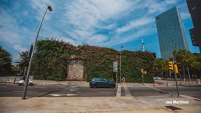 Poblenou Centre Park Area Flowers Walls Park Street Modern Bcn-1