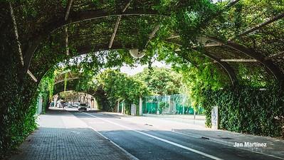 Poblenou Centre Park Area Flowers Walls Park Street Modern Bcn-91