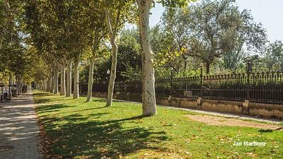 Ciutadella Urban Park Classic Bcn-163