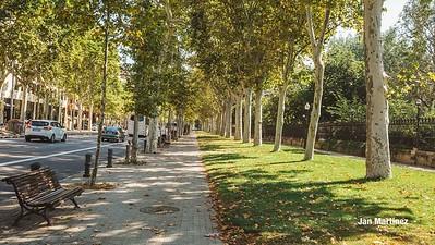 Ciutadella Urban Park Classic Bcn-162