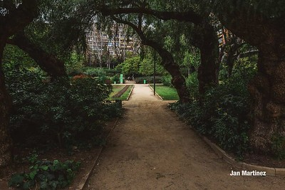 Turo Park Classic Cloudy Stairs Bcn-12
