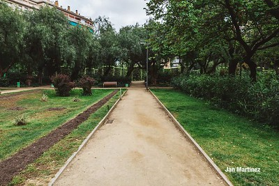 Turo Park Classic Cloudy Stairs Bcn-19