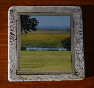 Marsh Window
